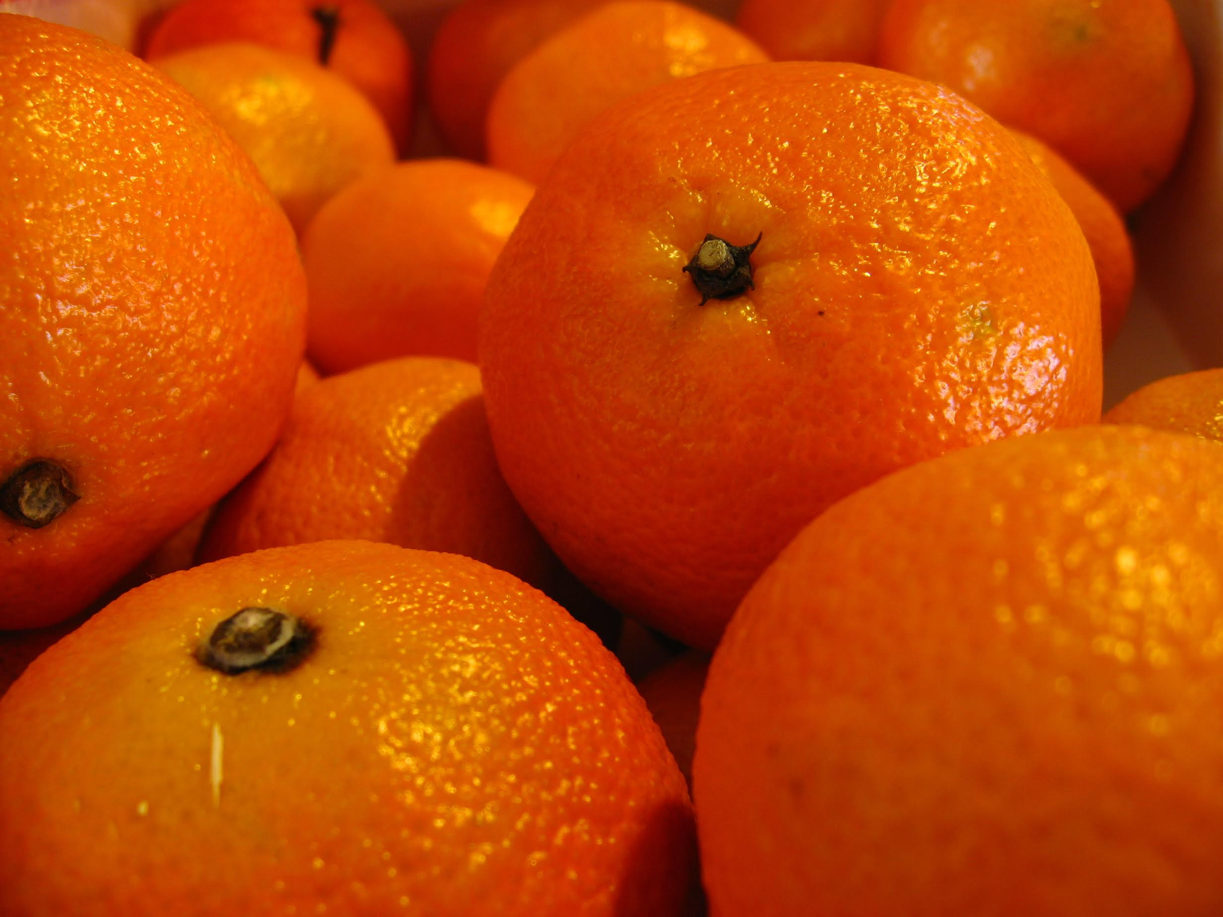 oranges-fraiches